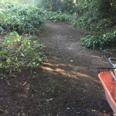 Countryside Volunteers Path At Eaton Lands